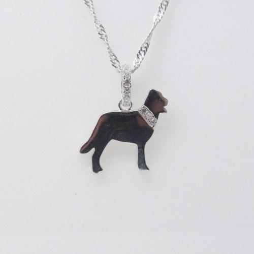 Collar Plata Labrador